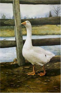 Image detail for -Portrait of a Goose Art Print by Nicholas P. Santoleri, Goose Print