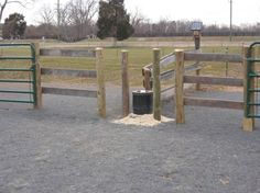 "from ""green horse design and management"" A smart design feature was extending the wood fence along the pasture before switching to an electric fence. This allows the horses to approach the waterer without fear of getting accidentally shocked."