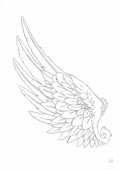 Lotus Tattoo Design, Feather Tattoo Design, Wing Tattoo Designs, Tattoos Skull, Sleeve Tattoos, Human Wings, Gel Pen Art, Angel Wings Art, Wings Drawing