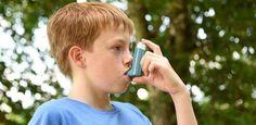 Bitter taste receptors hold key to treating asthma  #allergicasthma #allergicinflammation #Allergy #asthma #asthma #Chloroquine #Clinicalmedicine #disease #Health_Medical_Pharma #Immunesystem #immunology #inflammation #medicine #NationalAsthmaCouncil #PawanSharma #Quinine #Quinolines #Respiratorytherapy #reversedkeydisease #RTT #Taste #UniversityofTechnology,Sydney #UTSSchoolofLifeSciences #WoolcockInstitute