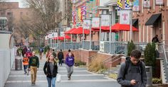 Temple University and the Philadelphia-based Women Organized Against Rape have launched a new on-site partnership to provide 24-hour support services for victims and survivors of sexual violence at the school's North Philadelphia campus.