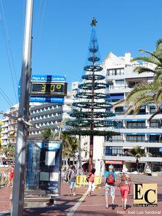 A más de 30 grados en el mes de la Navidad (diciembre) en Gran Canaria      30 grados y ambiente de...