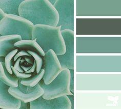 { succulent hues } image via: @thebungalow22