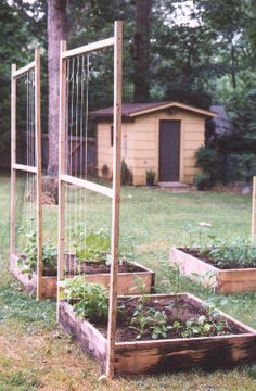 Square Foot Garden:  Everyone with 6 square feet of space can create a raised garden bed.  Mine is 4x8 ft, and has provided me with several zuchinni, eggplant, mini-peppers, and herbs such as basil and mint!  So peaceful to look at and so satisfying to grow your own food.