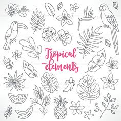 Set of contour tropical elements. Bullet Journal June, Bullet Journal Themes, Bullet Journal Inspiration, Floral Illustrations, Botanical Illustration, Paper Embroidery, Embroidery Patterns, Toucan, Leaf Drawing