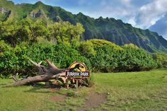 Famous scene from Jurassic Park!  Kualoa Ranch, Oahu, Hawaii  See more at: www.photospothunter.com