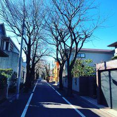 Tokyo Street View. #tokyo #japan #201601  (成城学園)