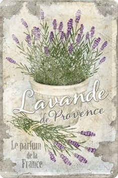 Use this as inspiration for lavender essential oil or lavender scented products!   http://www.storenectarine.com/Lavender-Essential-Oil-1-2-lb-p/po-172-62-a.htm: