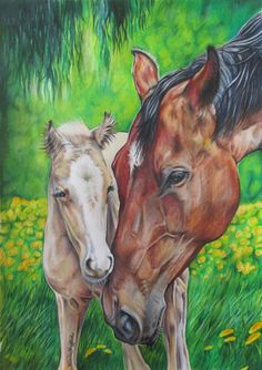 Karina Griffiths   COLORED PENCIL