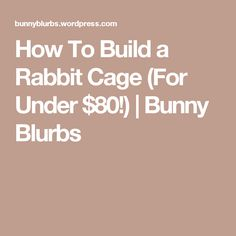 How To Build a Rabbit Cage (For Under $80!) | Bunny Blurbs