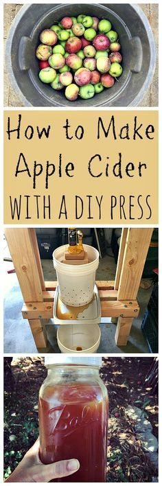 This is a great way to use up all those fallen apples from your tree! Makes the best juice ever, and you can even turn it into hard cider!