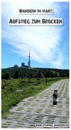 Ausgangs- und Endpunkt: Ilsenburg Aufstieg: 1020 m Abstieg: 1020 m Länge: 29,0 km Dauer: 6:00 h Stempelstellen: 6/8/9/22/(10)/23/24/(7)/30* Mountains, Nature, Travel, Outdoor, Hiking, Rocky Road, Bike Rides, Outdoors, Naturaleza