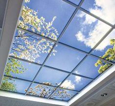 Max Luminaires USA — LED Virtual Mood Skylight LED Panel LED wall light panel