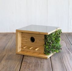 Your typical birdhouse is a classic A-frame—sometimes updated with some Victorian detailing. And while that's nice, what's a mid-century lover to do? That's where Sourgrassbuilt comes in, a California-based company that builds mini versions of modern architecture specifically for your feathered friends.