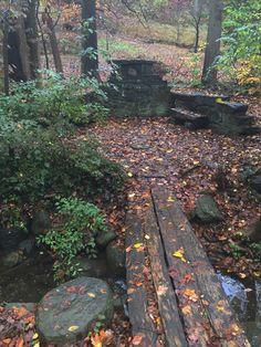 Dumbarton Oaks Park Seat Dc Photography, Stepping Stones, Sidewalk, Park, Garden, Outdoor Decor, Home Decor, Stair Risers, Garten