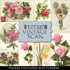 Far Far Hill: New Freebies Vintage Postcards with Flowers