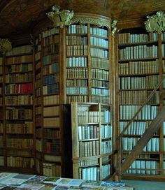 I've always loved hiding space reading shelves. Moreso if the hiding space is a reading nook. - Don't you love it - secret passage boookshelves a-secret-door-and-floor-to-ceiling-bookshelves