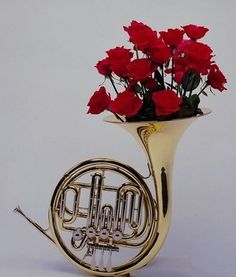 French horn w/ flowers Horn Instruments, Best Friends Aesthetic, Mellophone, Music Collage, Band Nerd, French Horn, Music Aesthetic, Happy Vibes, Music Humor