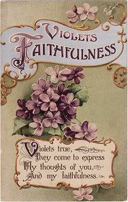 "Violets: Faithfulness. (One of the key words for Aquarians is ""Loyalty"")."