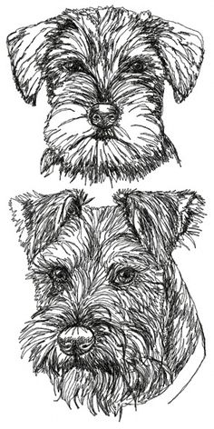Advanced Embroidery Designs - Schnauzer with Uncropped Ears Set
