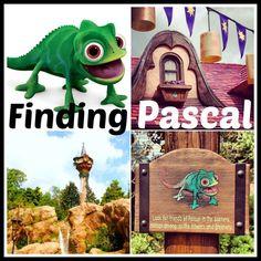 Hidden Treasures: Disney World Unveils New Tangled-themed Scavenger Hunt