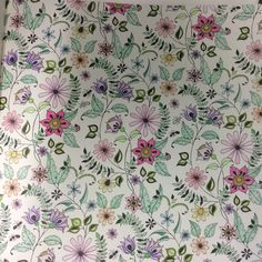 From Johanna Basford Secret Garden coloured by me