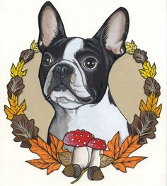 Sketchbook page of a Boston Terrier by Jeroen Teunen, The Dog Painter. For Custom Dog Portraits visit:www. blackspecs.de