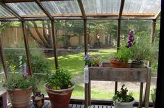 greenhouse attached to kitchen - Google Search
