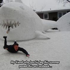 Snow shark season…