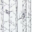 Jenny Wren 2 Wren, Snow, Outdoor, Outdoors, Outdoor Games, The Great Outdoors, Eyes, Let It Snow