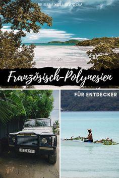 Natur pur auf Französisch-Polynesien. Diese Abenteuer bietet euch das Paradies in der #Südsee #polynesien Bora Bora, Tahiti, Tourist Information, Photos Voyages, Digital Nomad, Travel Agency, Dream Vacations, Travel Pictures, Tourism