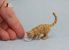 "I call this one ""Saucer of Milk"" Ginger Tabby Cat. One of my recent miniature scale 1:12 cat sculptures of polymer clay, wire and furry coat of soft alpaca wool. I've made several of these ty..."
