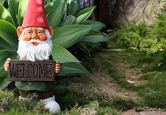 funny garden gnomes - Google Search