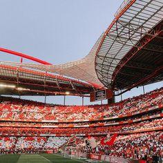 Benfica Wallpaper, Motivation Quotes, Grande, 1, Soccer, Sporty, Instagram, Building, Outdoor Decor