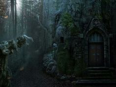 Old dwelling in the forest