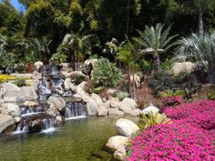 Waterfalls - Grand Tradition Fallbrook