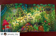 "Polubienia: 440, komentarze: 8 – Desenhos Colorir (@desenhoscolorir) na Instagramie: ""Pára tudooo! Que lindeza! By  @january_toy  #florestaencantada  #enchantedforest #johannabasford…"""