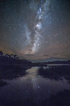 Light Reflected | the Milky Way reflected in Lake Manuwai, mid Northland. NZ