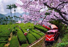 Chiayi, Taiwan