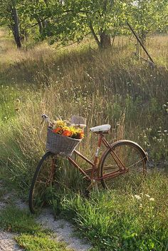 Country Living ~ take a bike ride with nature. Spring Aesthetic, Nature Aesthetic, Aesthetic Green, Aesthetic Gif, Aesthetic Vintage, Aesthetic Fashion, Fairytale Garden, Fairytale Cottage, Different Aesthetics