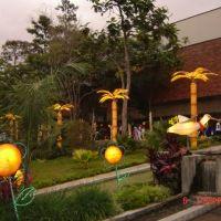 Foto de Bucaramanga, Colombia Plants, Bucaramanga, Countries, Colombia, Cities, Fotografia, Pictures, Plant, Planets