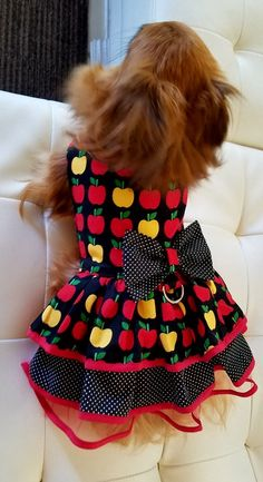 Apple Dog Dress by Fancy Dog Puppy Dress Pet Dog Halloween Costumes, Dog Costumes, Cute Dogs Breeds, Dog Clothes Patterns, Dog Dresses, Dog Coats, Dog Supplies, Pet Clothes, Dog Accessories