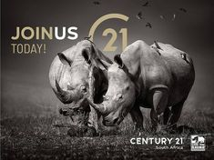 Our family through thick and thin!  Give us a call and join the Century 21 team of relentless franchisees.  A Worldwide Leader In Real Estate in partnership with Save the Rhino International  Buy | Sell | Rent www.century21.co.za www.savetherhino.org/ #C21 #Leaders #buy #sell #rent #ENERGACITY #support #worldwideleader #givingback #SAVETHERHINO #franchise @savetherhinointernational Thick And Thin, Save The Rhino, Relentless, Property For Sale, 21st, Join, Buy And Sell, Real Estate
