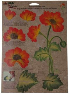 Lot 36 FolkArt One Stroke Painting Reusable Teaching Guide Poppies 1147 Flowers