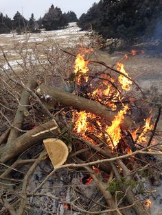 2/08/2014 - We burned three huge brush piles on the land today! Bye bye, cedars!