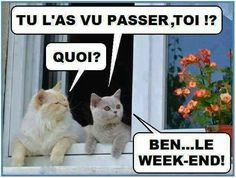 Le week-end ???