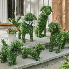 diy halloween decorations for inside You don't need a country estate or master gardener to enjoy the everlasting charm of our Peabody Faux Boxwood Garden Dog. Boxwood Landscaping, Boxwood Garden, Landscaping With Rocks, Front Yard Landscaping, Front Yard Decor, Sloped Front Yard, Front Garden Landscape, Landscaping Tips, Dog Garden