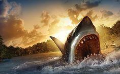 Filmes De Terror Tubaroes 2016 - Férias Sangrentas De Verão - Completos ...