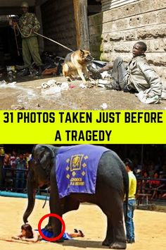 31 PHOTOS TAKEN JUST BEFORE A TRAGEDY Weirdest Picture Ever, Weird Stories, How To Take Photos, Death, Shit Happens, Life