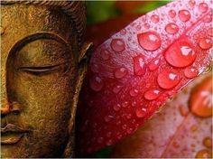 Древний рецепт Молодости и Красоты из Тибетской медицины. Стоит сохранить…